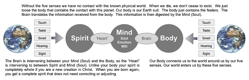 Spirit - Mind - Body